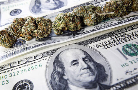 Tips for Investing in Cannabis | Cannabis Now | Japanese sacred herb, Marijuana | 大麻 | Scoop.it