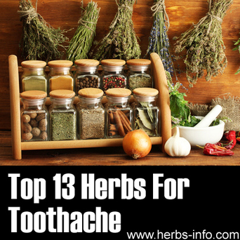 Blog » Top 13 Herbal Treatments For Toothache | Toothache | Scoop.it