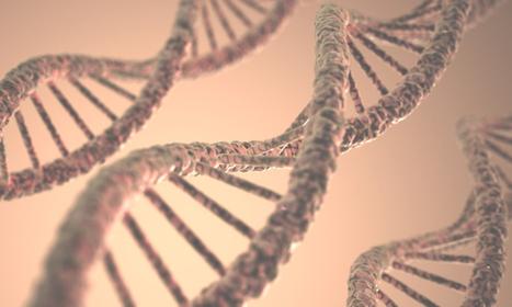 Le séquençage ADN à bas coût, une révolution fabuleuse... et dangereuse | Freaky | Scoop.it