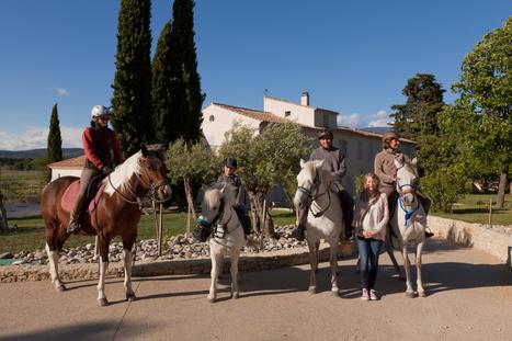 Découvrir le vignoble à cheval, c'est génial ! - Savourez la Provence | Oenotourisme | Scoop.it