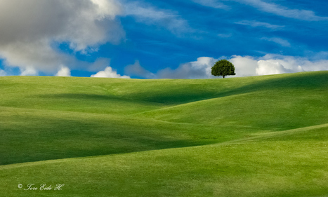 4 Rules of Composition for Landscape Photography | photography | Scoop.it