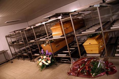 Afrique du Sud : le mort... n'était pas mort ! | Mais n'importe quoi ! | Scoop.it