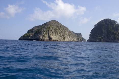 Crowdsourcing to Spot Illegal Fishing Vessels at Cocos Island Marine Protected Area : Indybay | Participation citoyenne | Scoop.it
