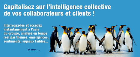 Sharewizme.com, solutions de travail collaboratif | Formation, Management & Outils Technologiques support de l'intelligence collective | Scoop.it