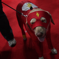 The Cosplay Of New York Comic-Con, Day One | Cosplay News | Scoop.it
