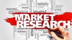 Comment réaliser une étude de marché ? | CCI du Tarn | Scoop.it