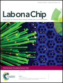 Surface-printed microdot array chips for the quantification of axonal collateral branching of a single neuron in vitro | Micropatterns | Scoop.it