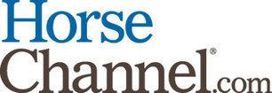 Mustang Horses | DanyelleD 3 | Scoop.it