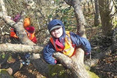 Enabling Environments: Outdoors - Forest fun | Nursery World | Creative effective environments | Scoop.it