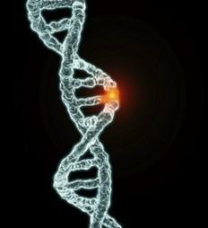 História da engenharia genética | Engenharia Genética | Scoop.it