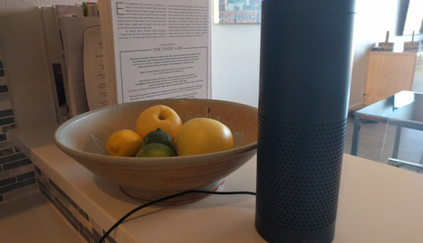 Amazon Bolsters Voice Based-Platform Alexa With Investment In TrackR   Entrepreneurship, Innovation   Scoop.it