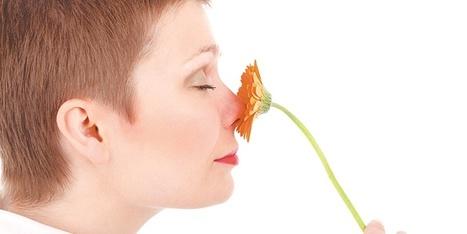 Puro aroma, la energía que sirve de terapia   Aromas - fragancias de la naturaleza   Scoop.it