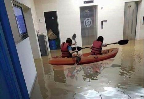 La bibliothèque inondée, les étudiants font du canoé au milieu des livres | Bibliothèques et Cie | Scoop.it