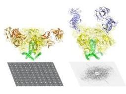 Most detailed picture yet of key AIDS protein | Science technology and reaserch | Scoop.it