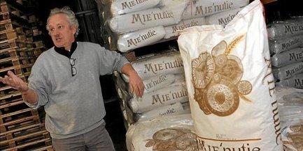 Le blé dur moulu devient l'ami du pain tendre, une première | Midi Libre.fr | Actu Boulangerie Patisserie Restauration Traiteur | Scoop.it