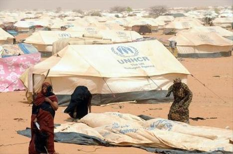 Malijet Journée mondiale des refugiés 2013 : Les maliens aussi victimes du déracinement Mali Bamako | Médiathèque UNHCR Sénégal | Scoop.it