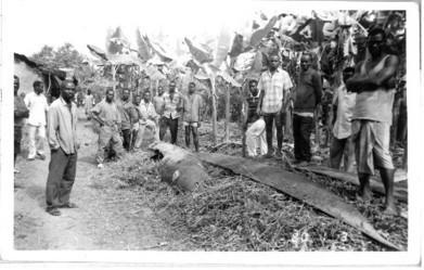 From 'Silence Would Be Treason' - the last writings of Ken Saro-Wiwa   openDemocracy   Daraja.net   Scoop.it