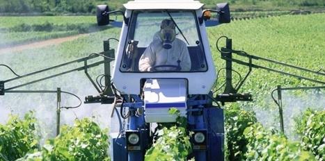 Les Français fortement exposés aux pesticides   Nature   Scoop.it