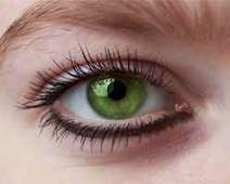 5 Tips to Grow Longer Eyelashes Naturally | Best Makeup & Beauty Tips | Scoop.it