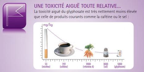 Roundup : Moins toxique que le sel de table ! … ou pas ?! | Regard sur le monde | Toxique, soyons vigilant ! | Scoop.it