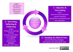 Professional Learning: The SCOPE Approach and Plan « Learning in the Social Workplace | The Academy for self-Learners | Scoop.it