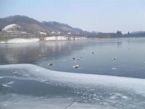 Isère Nord | La glace envahit les étangs | Tourisme en pays viennois | Scoop.it