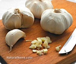 Six reasons garlic is an amazing healing superfood | News You Can Use - NO PINKSLIME | Scoop.it