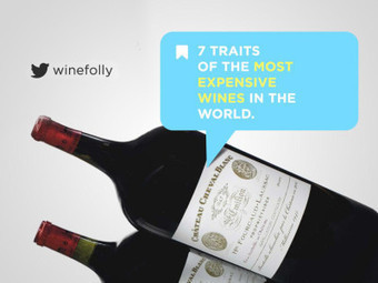 7 Traits of the World's Most Expensive Wine (video) - Wine Folly | 'Winebanter' | Scoop.it