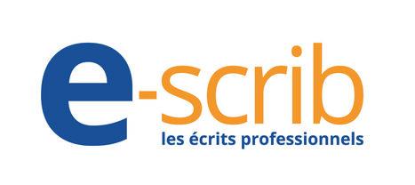 Création du logotype e-scrib et de sa charte logo | agence AntheDesign | Agence web AntheDesign | Scoop.it