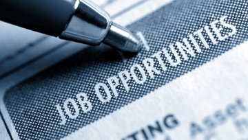 MSN Careers - 20 companies hiring in February - Career Advice Article   Interviewing and Job Search Tips!   Scoop.it