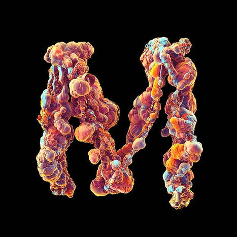 Experimental Typography Series Turns Letters Into Pulsating Biological Forms | The Creators Project | Computational Design | Scoop.it