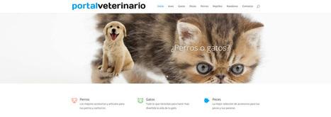 Nichos de mercado para afiliados de Amazon | Diseño web Málaga - Posicionamiento en buscadores, tiendas online | Diseño Web Málaga | Scoop.it