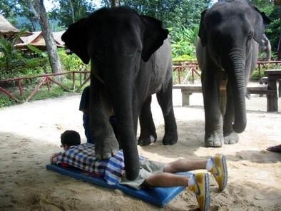 Le massage tantrique est-il érotique? Le récit d'Emilie - Rue89 | zenitude - toucher bien-être strasbourg | Scoop.it