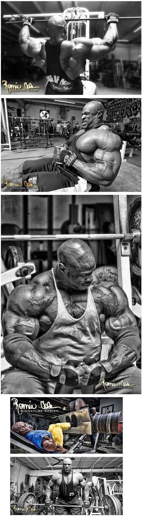 Ronnie Coleman Pro-Antium - A Complete Roundup | ✪ FITNESS MAGAZINE ✪ | Scoop.it