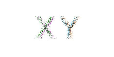 Un'asimmetrica anomalia tra la Y e la X | Per Perec | Scoop.it