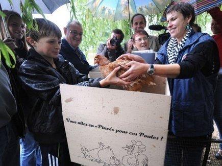 Un village de la Sarthe offre des poules pour réduire les déchets | Big and Open Data, FabLab, Internet of things | Scoop.it