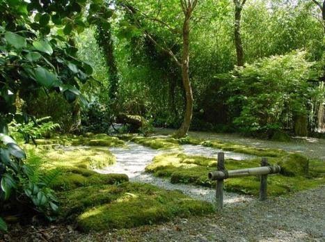 East meets West - Cornwall Japanese Garden | Japanese Gardens | Scoop.it