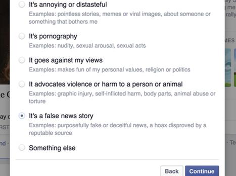Facebook : un outil pour mettre fin aux fausses informations | Responsable éditorial-consultant en stratégies éditoriales | Scoop.it