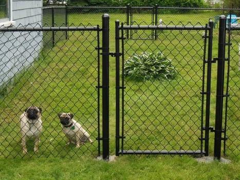 Backyard Fence Ideas | Home Design | Scoop.it