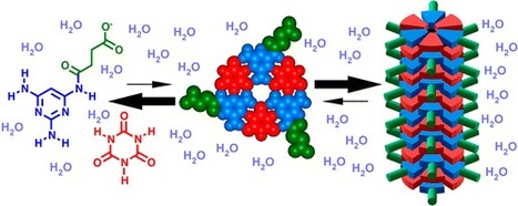 proto-RNA Molecules Self-Assemble in Water, Hint at Origins of Life | Amazing Science | Scoop.it