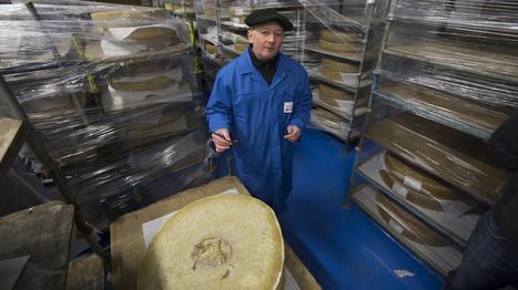 A Albertville, une usine transforme le fromage en électricité | Industrie fromagère | Scoop.it