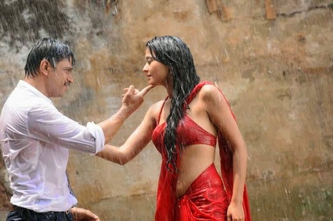 Surveen Chawla - Hot Wet Saree Photos from Telugu Movie Itlu Prematho - PhotoFunMasti   Hot & Sexy Actresses, Models, Women Photos...   Scoop.it