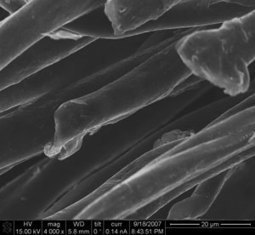 Nanotechnology e-textiles for biomonitoring and wearable electronics | Web of Things | Scoop.it