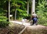 Espaces naturels, place aux Sentiers pour tous de l'ONF | Sale temps pour la planète | Scoop.it