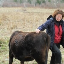 Blue Hill raw milk ruling deals blow to local food sovereignty movement | Food issues | Scoop.it