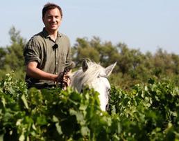 La Vallée du Rhône | Veille sur le vin | Scoop.it