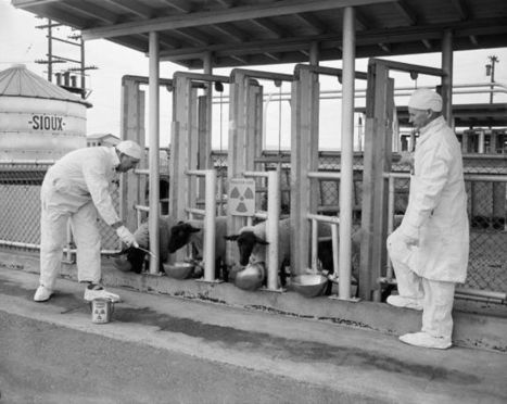 The Secret 1949 Radiation Experiment That Contaminated Washington   Strange days indeed...   Scoop.it