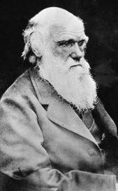 'A wife is better than a dog': Charles Darwin's main reason for marriage | Books in the press | Scoop.it