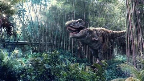 Crearán Un Dinosaurio Con Adn De Gallina | Tecnología Avanzada | Scoop.it