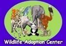 http://www.kidsplanet.org/ | Gr4 Endangered Species | Scoop.it